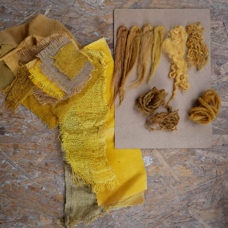 Yellow and brown natural dye samples